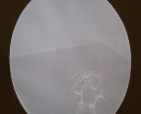 Handmade Papercut Drawing by artist Kate Ive