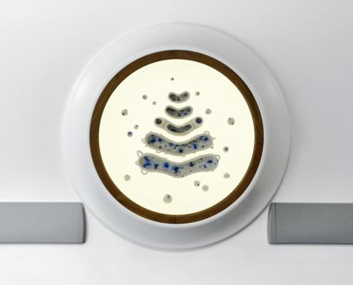 Royal Hospital for Children Artwork, sculpture in a wall mounted cabinet, ceramics, white earthenware, dendrite mocha diffusion golgi apparatus in a lightbox, neurology, neuroscience