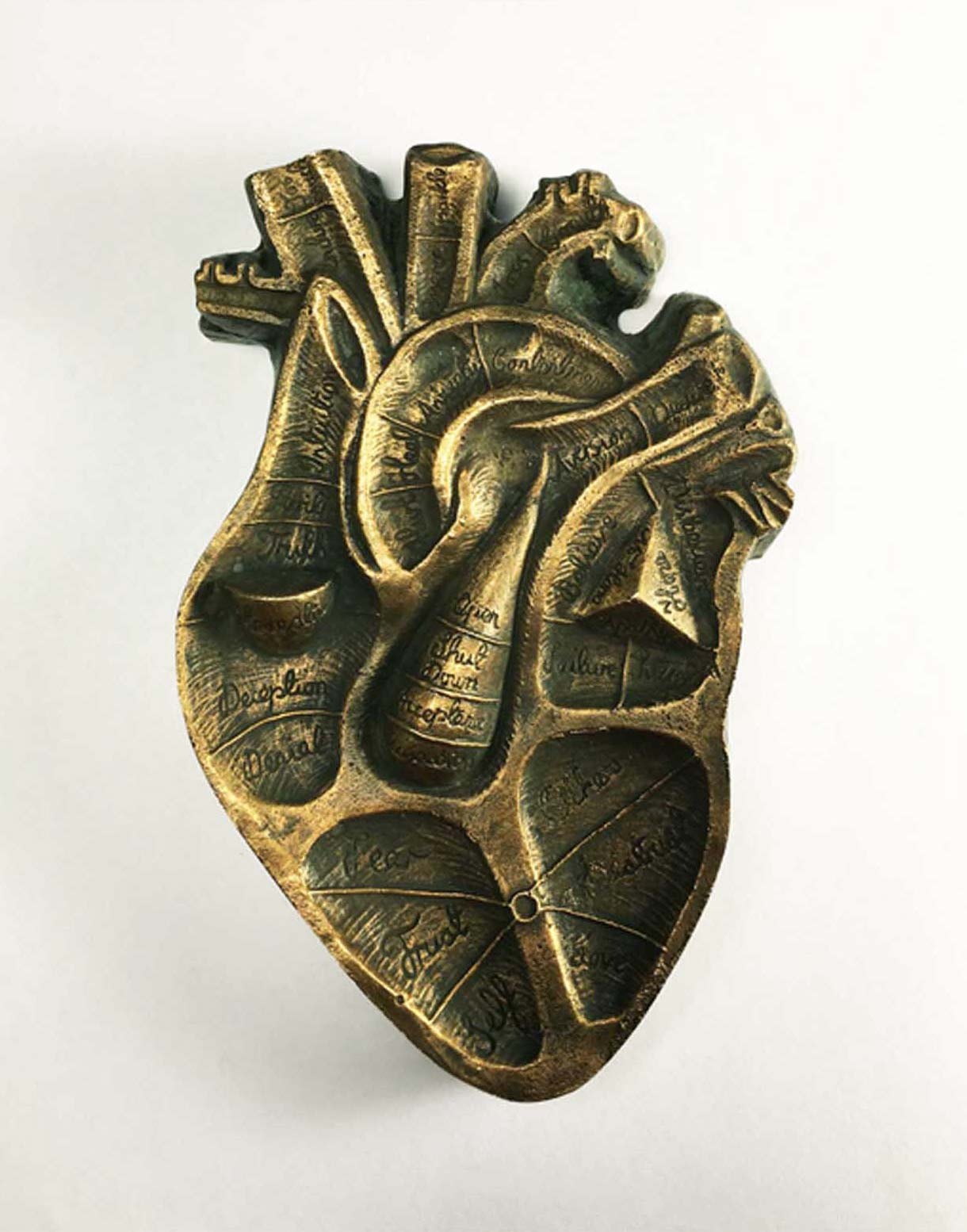 Handmade artwork of a anatomical heart sculpture with phrenological text in Bronze by artist Kate Ive